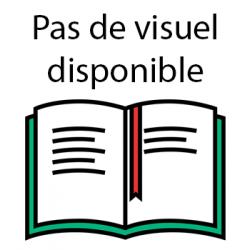 LES AVENTURES DU PYRO-BARBARE ET DE BILLY - TOME 1LA FORTERESSE DU CHAUDRON NOIR